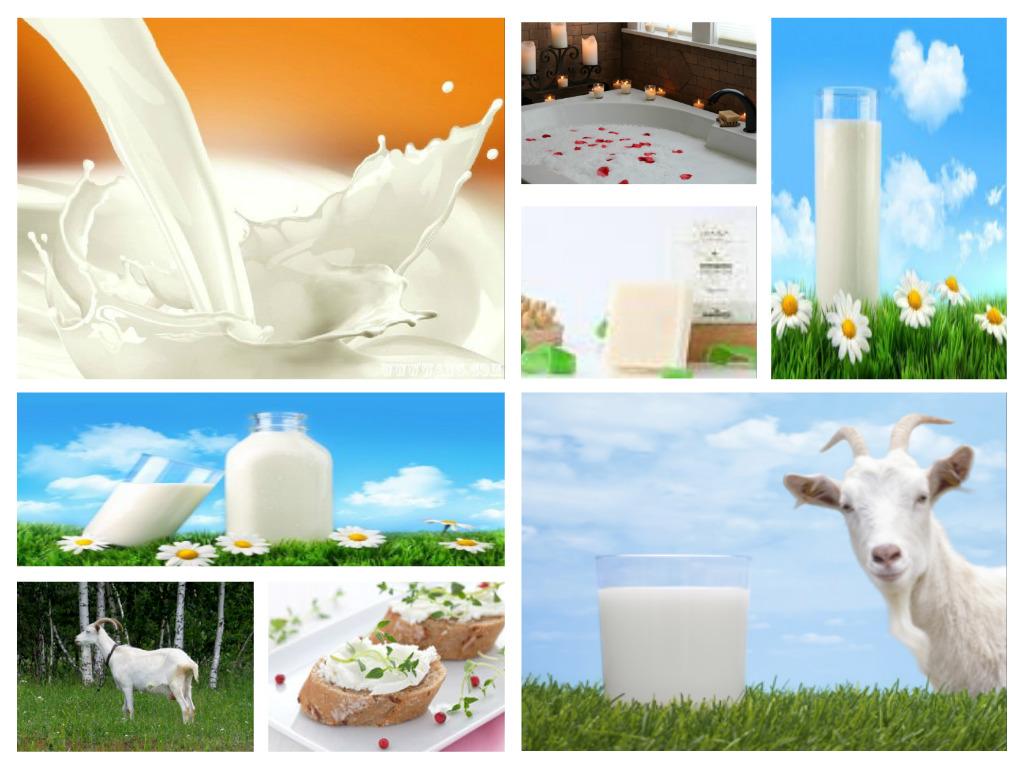 Goats Milk Soap Benefits
